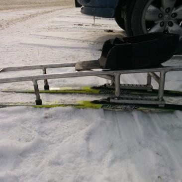 Custom Sit Ski